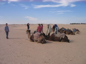 Riding camels in Douz